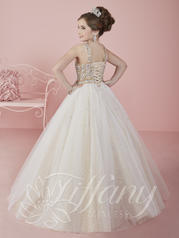 13462 Champagne/Ivory back
