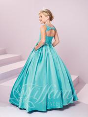 13485 Turquoise back