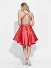 17-507 Red back