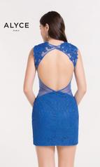4443 Cobalt Blue back