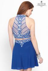46548 Blue Iris/Silver back