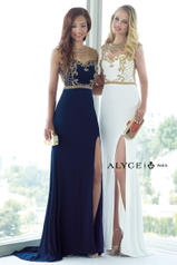 6361 Navy/Gold multiple