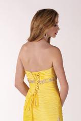 6737 Daffodil back
