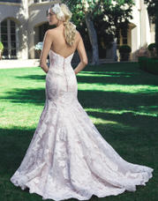 2224 Champagne/Ivory/Silver back