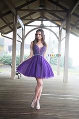 1760 Purple front