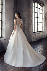 CT207 Champagne/Ivory/Silver back