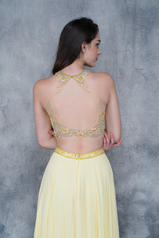 1365 Yellow back