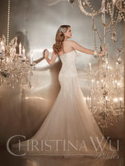 15557 Ivory/Champagne/Silver back