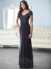 17839 Christina Wu Elegance