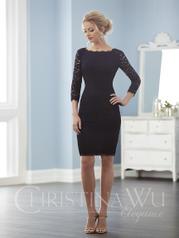 20235 Christina Wu Elegance