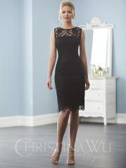 20238 Christina Wu Elegance