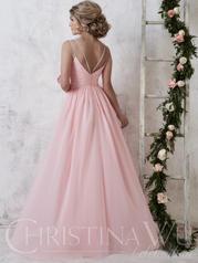 22732 Pima Pink back