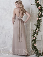 22741 Taupe back