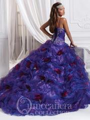 26644 Purple/Violet back