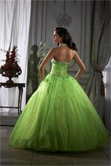 26652 Lime back