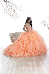 26872 Quinceañera by House of Wu
