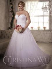 29280 Christina Wu Love