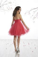 52421 Pomegranate/Pomegranate back