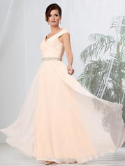 2015 Caterina Collection