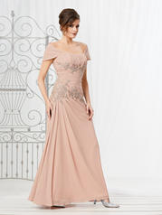 2037 Caterina Collection