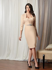 3050 Caterina Collection