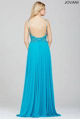 24377 Turquoise back