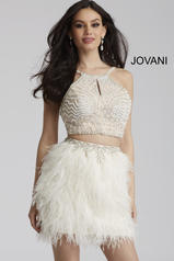 50119 Jovani Homecoming Dresses