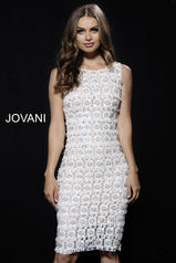50785 Jovani Evening