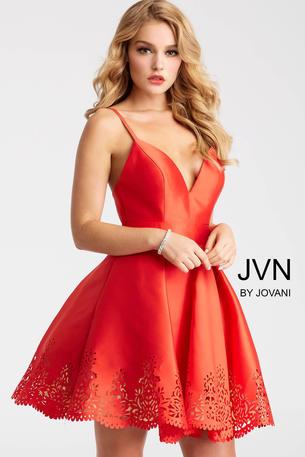 JVN55376