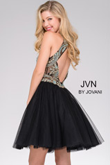 JVN47971 Black back