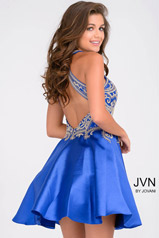 JVN41690 Royal back