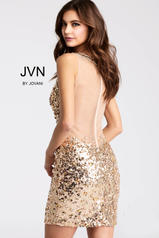JVN32403 Gold back