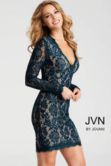 JVN42635 Peacock front