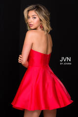 JVN47317 Red back