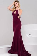 JVN49373 Eggplant front