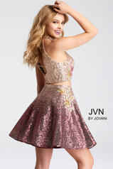 JVN54472 Violet back