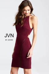 JVN43008 Eggplant front