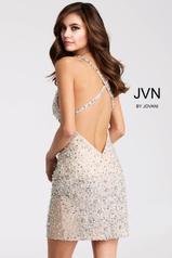 JVN51294 Silver back