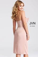 JVN55656 Blush back