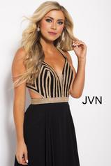 JVN59048