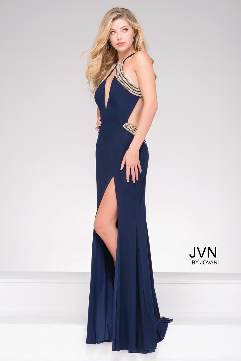 JVN45563