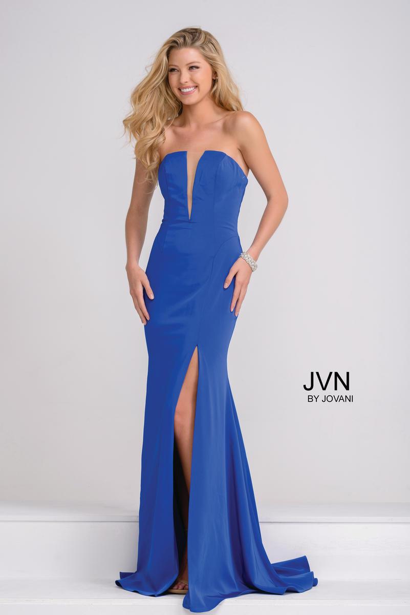 JVN49580