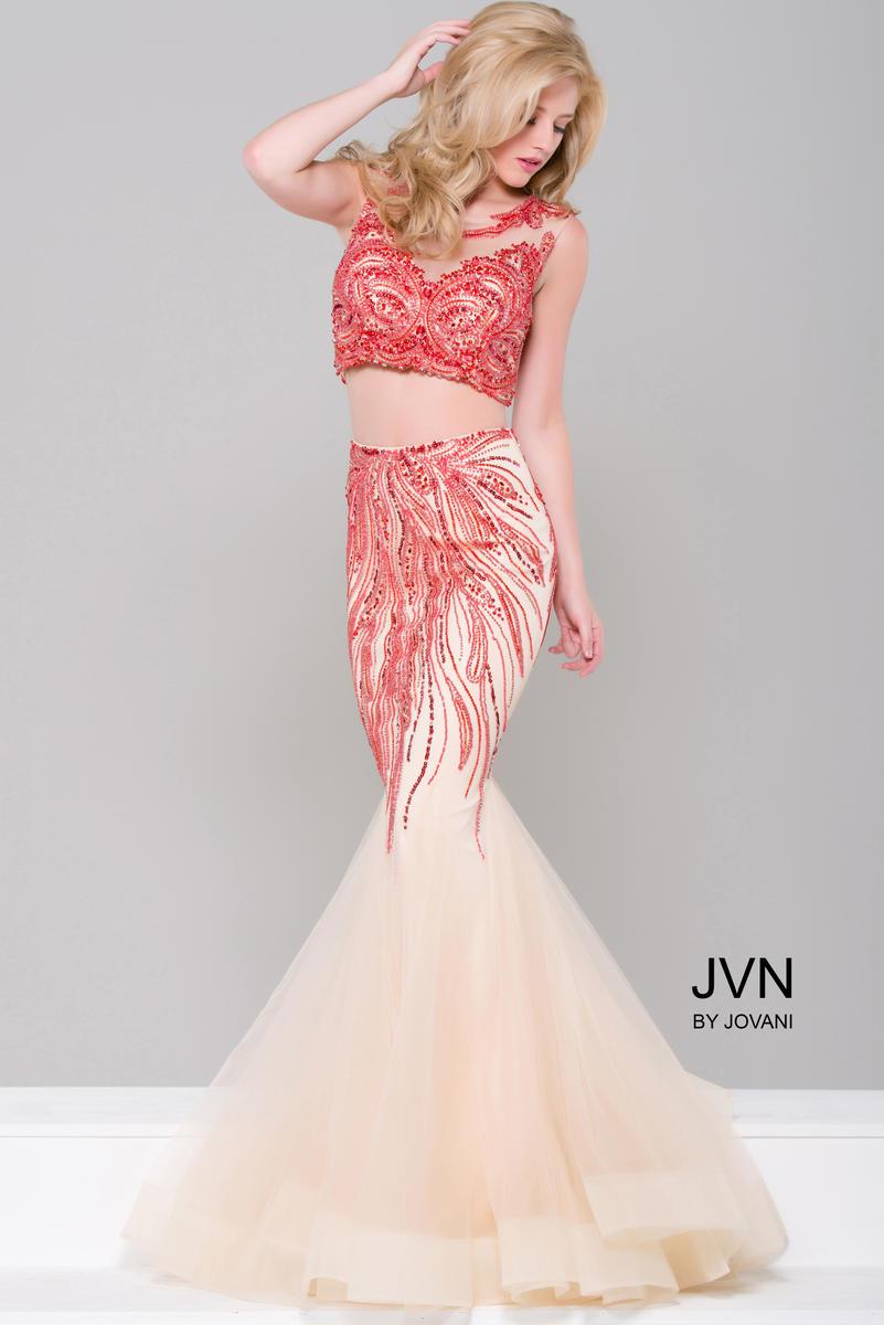 JVN36772