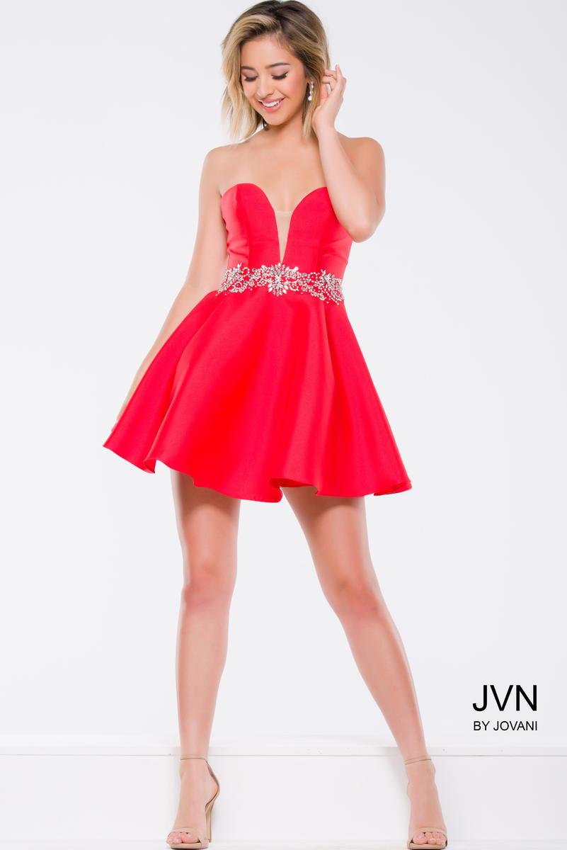 JVN41495