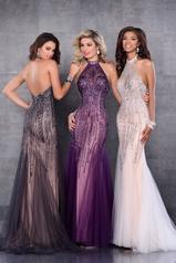 17196 Purple/Nude multiple