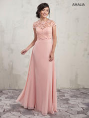 MB7006 Amalia Bridesmaids