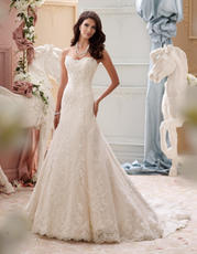 115245-Indiana David Tutera for Mon Cheri Bridal
