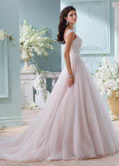 116203 Tea Rose/Champagne front