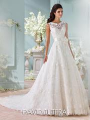 116218 David Tutera for Mon Cheri Bridal