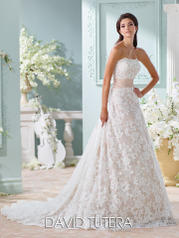 116219 Yalene - David Tutera for Mon Cheri Brid